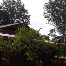 Mbano-Construction-Jan-2019-nestled-under-large-teak-trees
